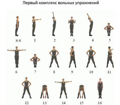 Первый комплекс вольных упражнений