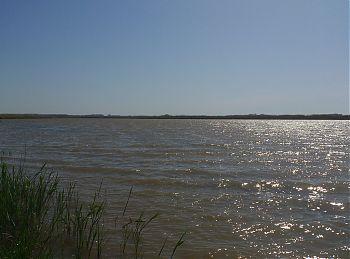 Ветер на речке