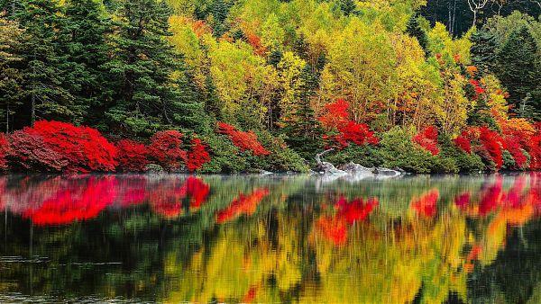 Осень - 17