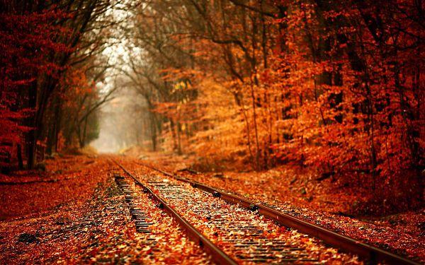 Осень - 20