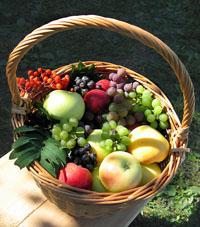 Плоды лета