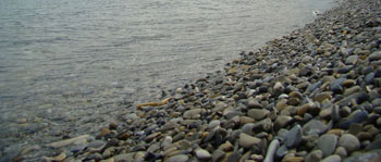 Камешки Черного моря