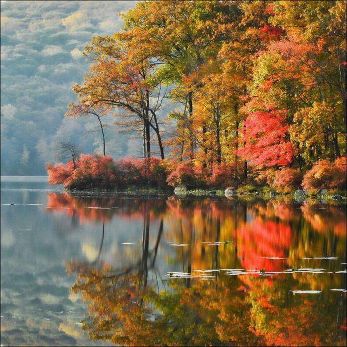Картинки по осень нарисованные